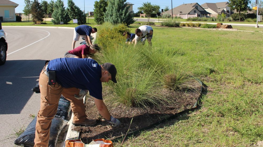 Volunteers planting a landscape